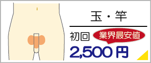 福岡県飯塚で玉脱毛、竿脱毛は地域最安値の初回料金2,500円からご利用いただけます。