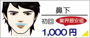 鼻下脱毛、業界最安値の初回料金1,000円、ヒゲ脱毛お顔脱毛部位